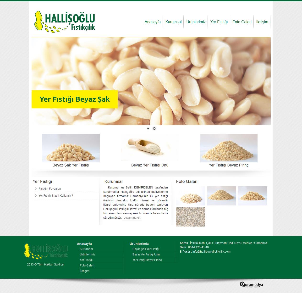 Hallişoğlu Fıstıkçılık Osmaniye Web Tasarım